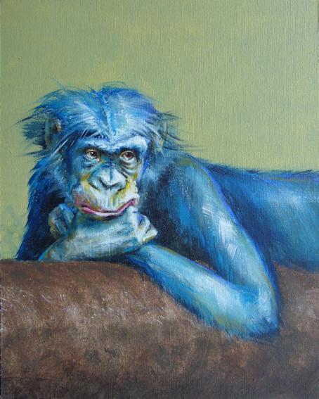 Illustration zu Bobo der Bonobo von Sabine Koschier