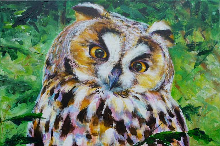 Waldohreule, Krafttier Eule, gemalt von Künstlerin Sabine Koschier