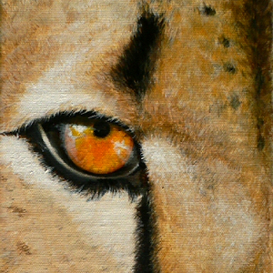Gepard Krafttier Raubkatze Malerei von Sabine Koschier