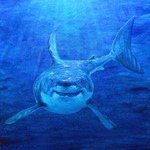 Krafttier Hai Malerei Bedeutung