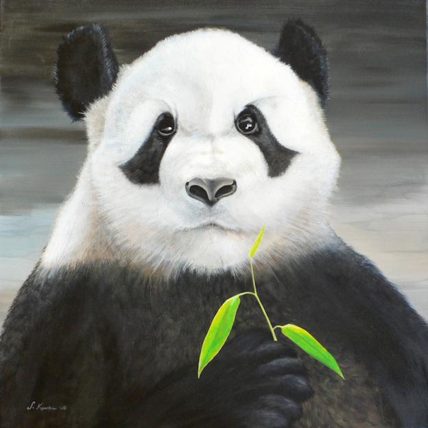 Pandabär Panda Krafttier Malerei der Künstlerin Sabine Koschier