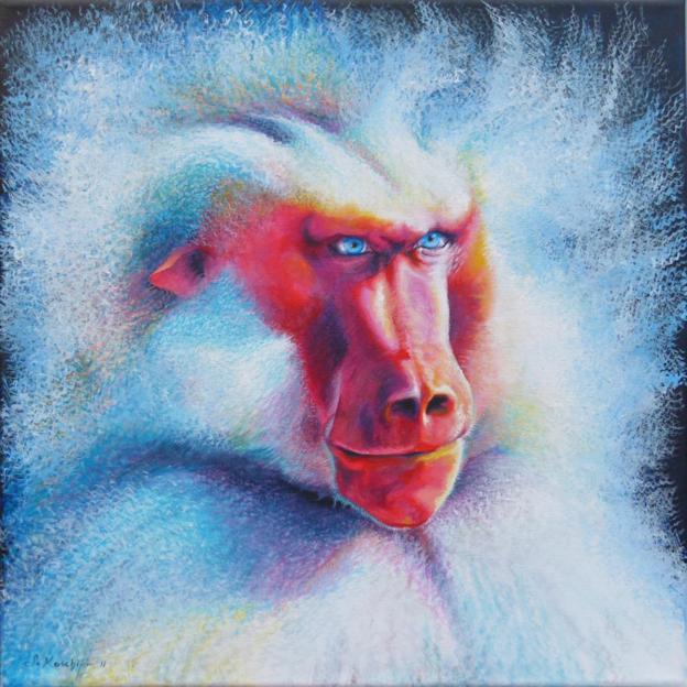 Pavian Affe Krafttier Malerei der Künstlerin Sabine Koschier