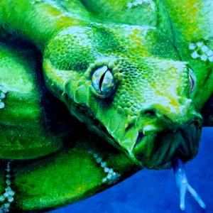 Schlange Krafttier Bedeutung gemalt von der Künstlerin Sabine Koschier