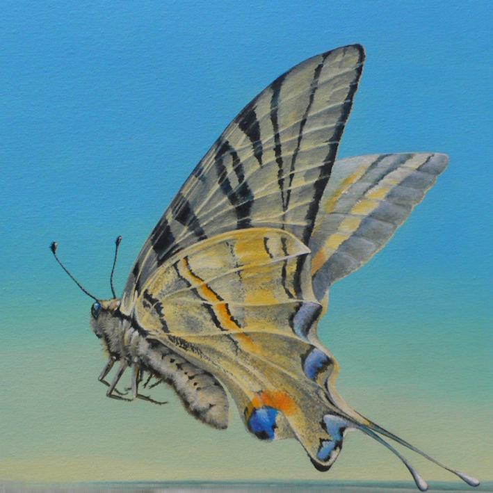 Schmetterling Krafttier Bedeutung Malerei der Künstlerin Sabine Koschier