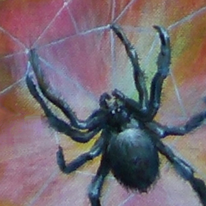 Spinne Krafttier Bedeutung Malerei