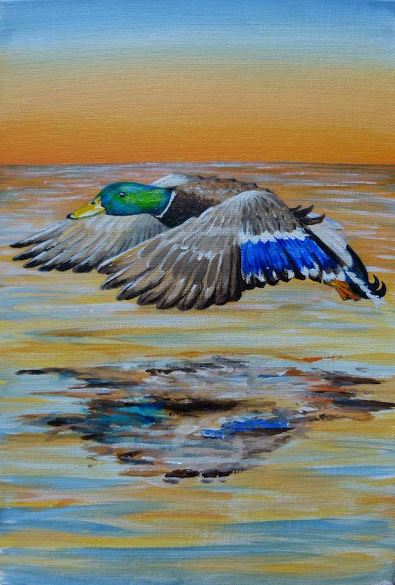Krafttier Ente, Stockente gemalt von der Künstlerin Sabine Koschier