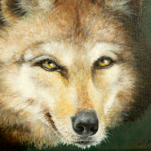 Wolf Krafttier Bedeutung Malerei Kunst