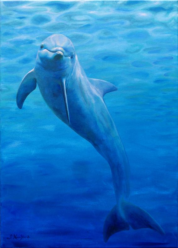 Krafttier Delfin Malerei Sabine Koschier Bedeutung