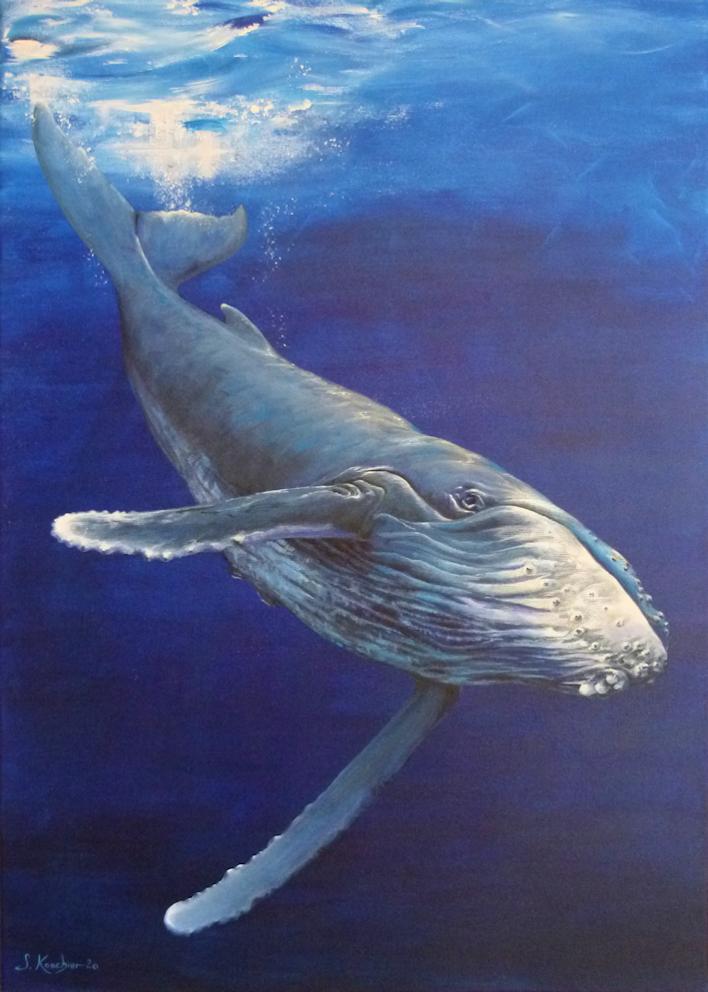 Krafttier Wal / Buckelwal gemalt von der Künstlerin und Schamanin Sabine Koschier