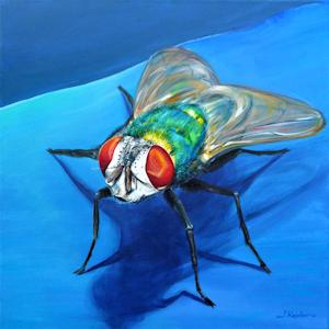 Krafttier Fliege Goldfliege gemalt von Künstlerin Sabine Koschier